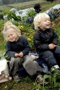Kornelia og Orson har en fest. Og det er en af grundene til, at vi dyrker køkkenhave. Foto: Katja Hemming Hansen