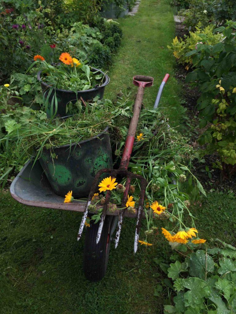 Godning til kokkenhaven - trillebor til kompost
